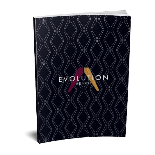 Evolution_bro_533